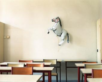 Horse in Classroom, 2nd Floor, 2010