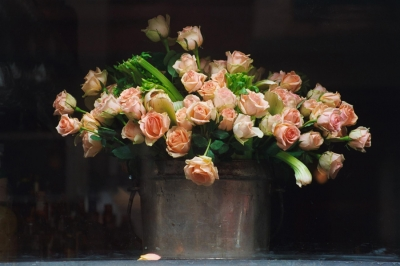Carol Ross: Roses in a Shop Window in New York City