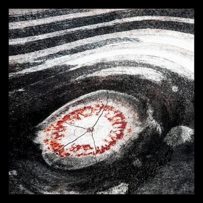 Ron Evans: Dante's 5th Ring of Hell (Anger), 2014