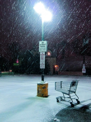Frank Schramm: Lost Shoppers: Shopping Carts from the New Jersey Landscape