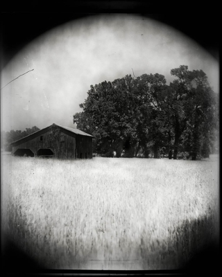 Shane Booth: Little Barn