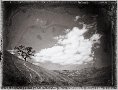 """Michael Kirchoff: Victory Trailhead; From a new and ongoing body of work, """"Sanctuary"""". Photographed with expired Polaroid positive/negative film."""