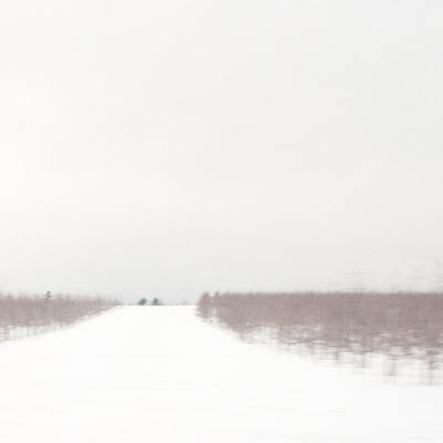 BilowDe-Winter-Field-North-Country-No-2_1
