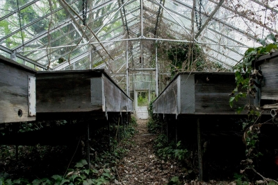 Sara Shields: Abandoned Greenhouse at the Sleighton Farm School in Glen Mills, PA