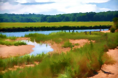 Holly Gordon: The Swamp at Crab Meadow
