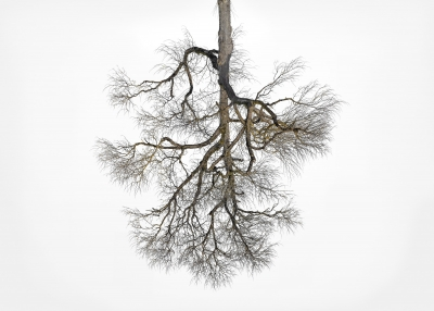 "Christoph Franke: Being 48*2'37"" N 10*57'39"" E, from ""On the Nature of Things"" series"