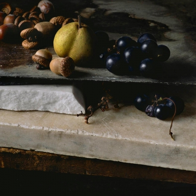 Paul Cary Goldberg: Still Life with Acorns, Pear, and Grapes