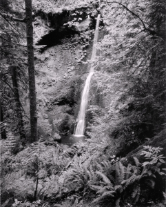 Timothy D. Smith: Waterfall, Olympic National Forest, WA