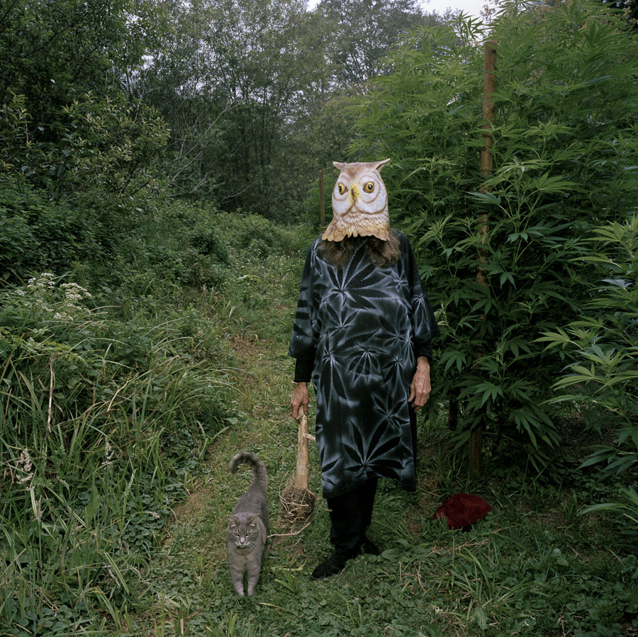 Stuart Rome: The Owl and the Pussycat, Mendocino, from the series, In the Land of the Lotus Eaters