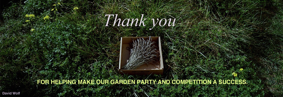 Post-Garden Party & Competition