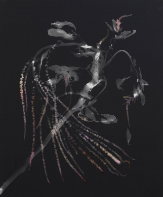 Christine Elfman: Amaranth Photogram II