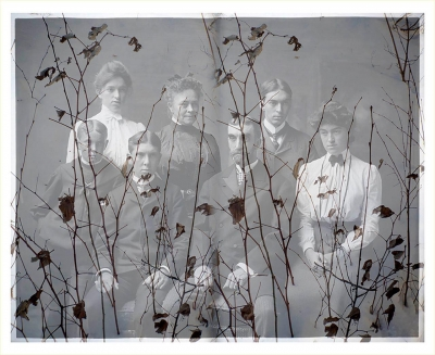 SiegfriedEl-Family-with-Branches_1