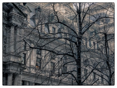 BenedettoAn-City-Hall_1