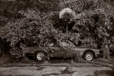 Gary Beeber: Abandoned Jaguar, Found along Nutt Road, Washington Township, Ohio
