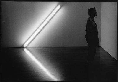 Harvey Finkle: From the Museum series