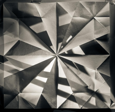 Howard Lewis: #20 from the Origami Folds series